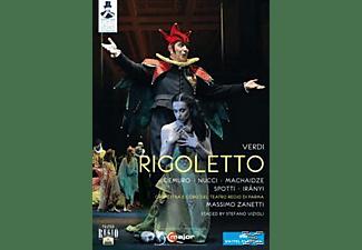 Francesco Demuro, Nino Machaidze, Iranyi Stefanie, Marco Spotti, Orchestra E Coro Del Teatro Regio Di Parma, Nucci Leo - Rigoletto  - (DVD)