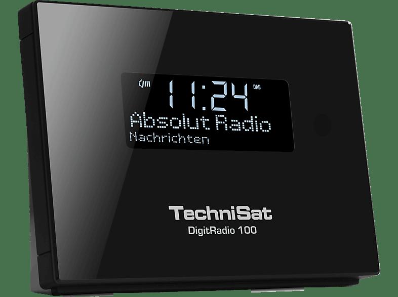 TECHNISAT DigitRadio 100, DAB+ Digitalradio-Empfangsteil