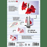 OLYMPIA 9181 A4 Laminierfolie