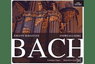 Andreas Liebig (orgel Arp Schnitther Martinikerk G, Andreas Liebig - Orgelwerke [CD]