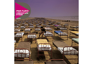 Pink Floyd - A Momentary Lapse Of Reason (CD)