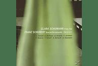 VARIOUS - Piano Trio - Quartet Rosamunde - Trio D 471 [CD]