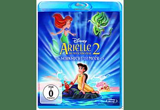 Arielle die Meerjungfrau 2 - Sehnsucht nach dem Meer (2013) [Blu-ray]