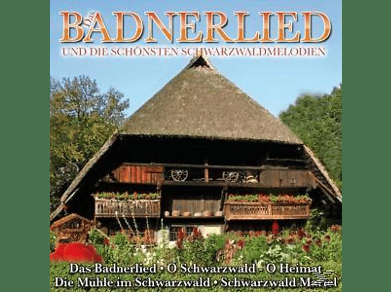 VARIOUS - Das Bradnerlied Und Die Schöns [CD]