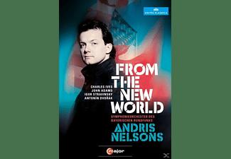 Sinfonieorchester Des Bayerischen Rundfunks - From The New World  - (DVD)