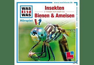 Was Ist Was - Folge 37: Insekten/Bienen Und Ameisen  - (CD)