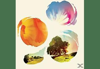 pixelboxx-mss-61255005