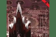Kurt Kramer, Markus-christian Raiser - Faszinierende Klangwelten - Orgel und Glocken [CD]