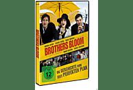 BROTHERS BLOOM - DIE GESCHICHTE VOM FAST PEFEKTEN [DVD]
