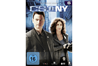 CSI: NY - Staffel 6 [DVD]