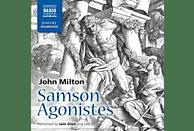 Iain/+ Glen - Samson Agonistes - (CD)
