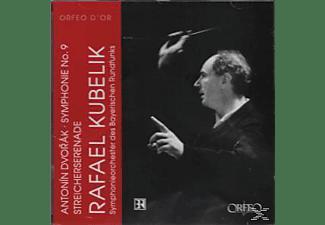Symphonieorchester Des Bayerischen - Sinfonie 9 op.95/Serenade op.22  - (CD)