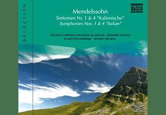VARIOUS, Seifried/Bramall/+ - Sinfonien 1+4  - (CD)