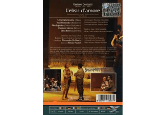 Borin, Benetta/Hernandez/Salerno/Esposito/Borin/De Marchi - Elisir D'amore  - (DVD)
