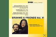Rainer Schmidt, Saiko Sasaki - Brahms & Freunde Vol.6 [CD]