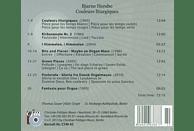 Thomas Sauer - Hersbo: Couleurs Liturgiques [CD]