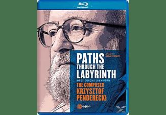 Janine Jansen Mutter - Paths Through The Labyrinth  - (Blu-ray)