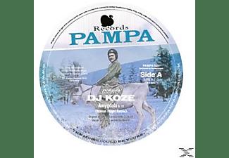 Dj Koze - Amygdala Remixes 2  - (Vinyl)