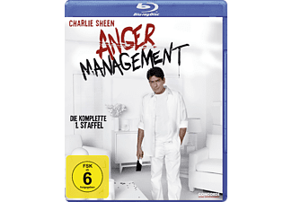 Anger Management - Staffel 1 Blu-ray