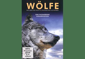 Wildlife-Edition : Wölfe - Das Leben der Wölfe in einzigartigen Aufnahmen DVD