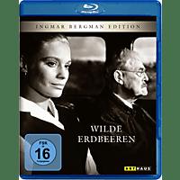 Wilde Erdbeeren Blu-ray