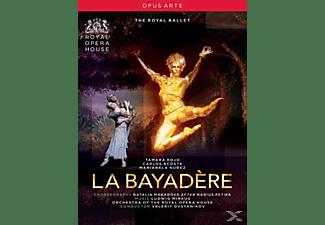 Ovsyanikov/Royal Ballet - La Bayadere [Uk Import]  - (DVD)