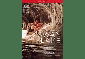 Orchestra Of The Royal Opera House, Nunez Marianela, Thiago Soares, Christopher Saunders - Schwanensee  - (DVD)