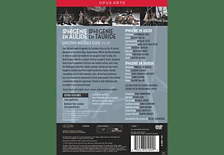 VARIOUS, Les Musiciens Du Louvre Grenoble, Chorus of De Nederlandse Opera - Iphigenie En Aulide & Iphigenie En Tauride  - (DVD)