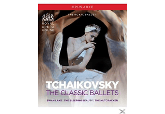 VARIOUS, Orchestra Of The Royal Opera House - The Classic Ballets  - (DVD)