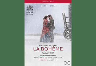 VARIOUS, Orchestra Of The Royal Opera House - La Boheme  - (DVD)