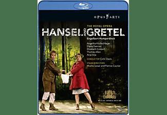 Davis, Kirchschlager, Damrau, Davis/Kirchschlager/Damrau - Hänsel Und Gretel  - (Blu-ray)
