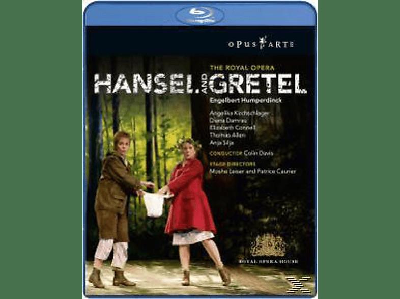 Davis, Kirchschlager, Damrau, Davis/Kirchschlager/Damrau - Hänsel Und Gretel [Blu-ray]