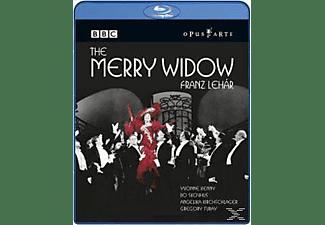 Kunzel/Kenny/Skovhus/Kirchschlager - Die Lustige Witwe (Engl.Gesungen)  - (Blu-ray)
