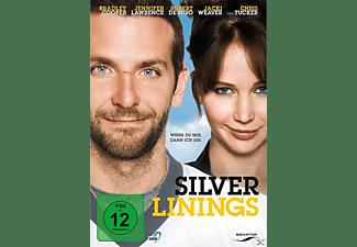 Silver Linings DVD