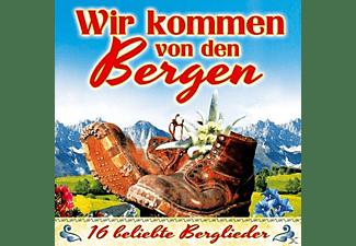 VARIOUS - Wir Kommen Von Den Bergen  - (CD)