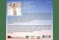 Stuart Jones - Ganzheitliche Heilung [CD]