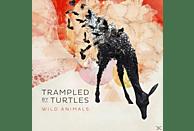 Trampled By Turtles - Wild Animals (Lp) [Vinyl]