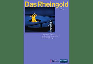 Frankfurter Opern- Und Museumsorchester, VARIOUS - Das Rheingold  - (DVD)