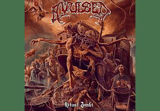 Avulsed - Ritual Zombi  - (CD)