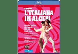 Goryachova/Esposito - Italiana In Algeri  - (Blu-ray)