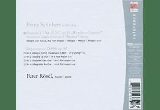 Peter Rösel - Wanderer-Fantasie/+  - (CD)