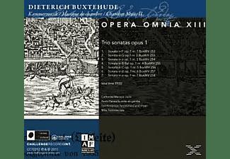 Ton Koopman, Members Of Abo - Opera Omnia XIII-Chamber Music Vo  - (CD)