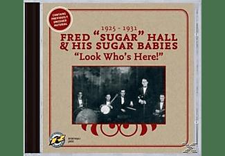 "Fred ""sugar"" & His Sugar Babi Hall, Fred 'sugar' Hall & His Sugar Babies - Look Who's Here!  - (CD)"