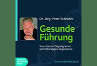 Gesunde Führung - (CD)