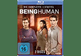 BEING HUMAN 1.STAFFEL KOMPLETT Blu-ray