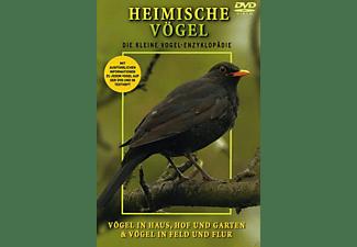 Heimische Vögel - Haus,Hof,Garten, Feld und Flur DVD