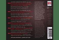 Ludwig Güttler, Ludwig/virtuosi Saxoniae Güttler - Triumph Des Corno Da Caccia [CD]