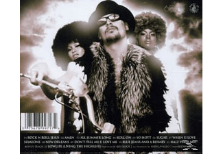 Kid Rock - Rock N Roll Jesus  - (CD)