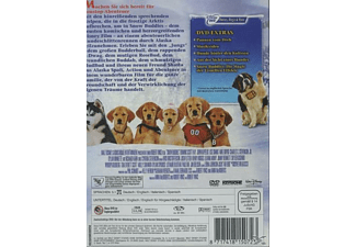 Snow Buddies - Abenteuer in Alaska DVD