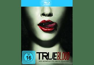 True Blood - Die komplette erste Staffel Blu-ray
